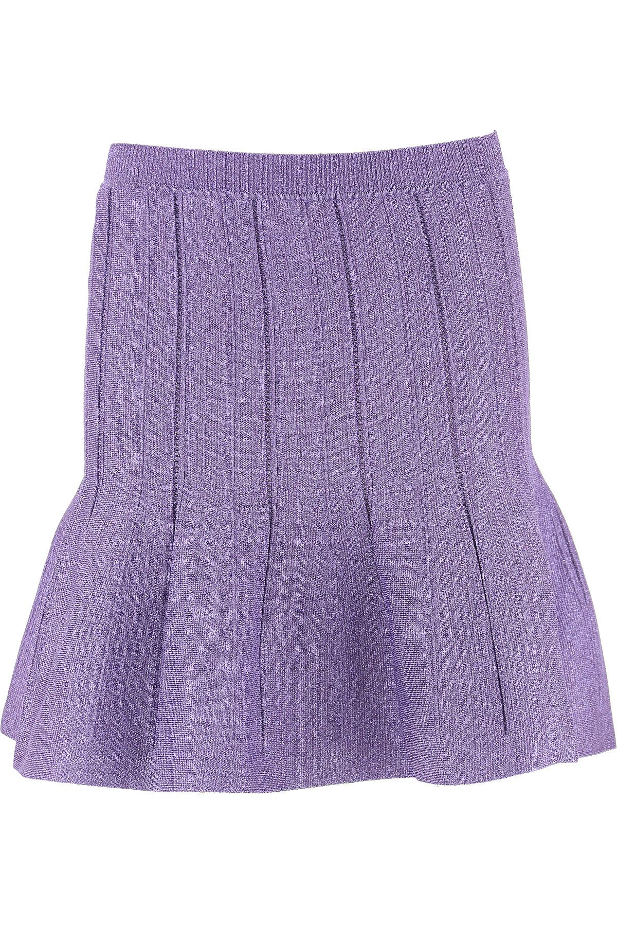 Image of Alberta Ferretti Skirt for Women, Violet, polyamide, 2017, 26 28