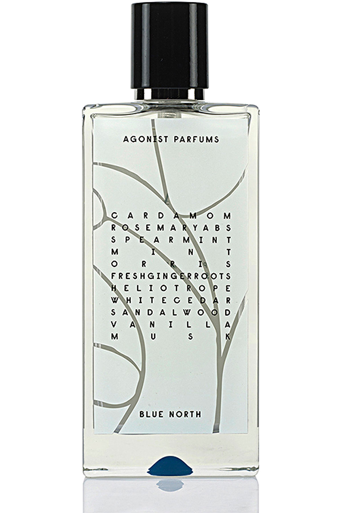 Agonist Fragrances for Men, Blue North - Eau De Parfum - 50 Ml, 2019, 50 ml