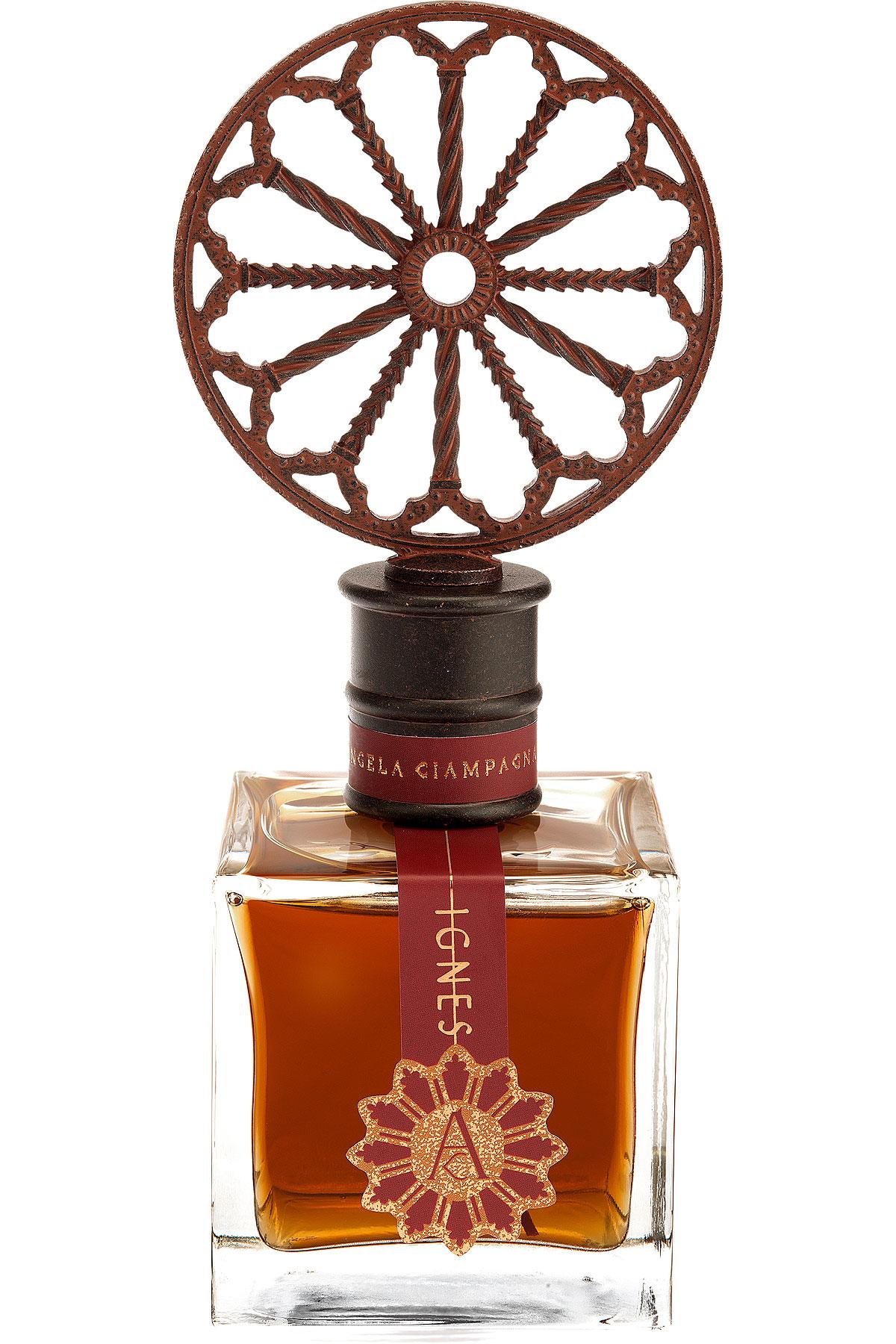 Angela Ciampagna Fragrances for Men, Ignes - Extrait De Parfum - 100 Ml, 2019, 100 ml