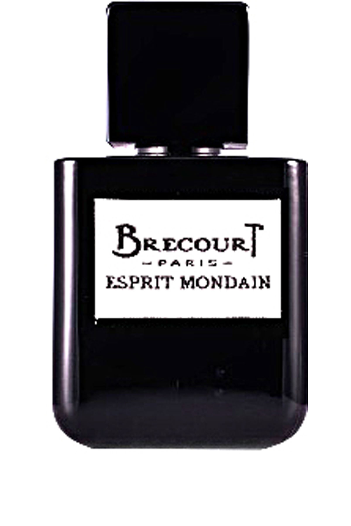 Brecourt Fragrances for Men, Esprit Mondaine Eau De Parfum 50 Ml, 2019, 50 ml