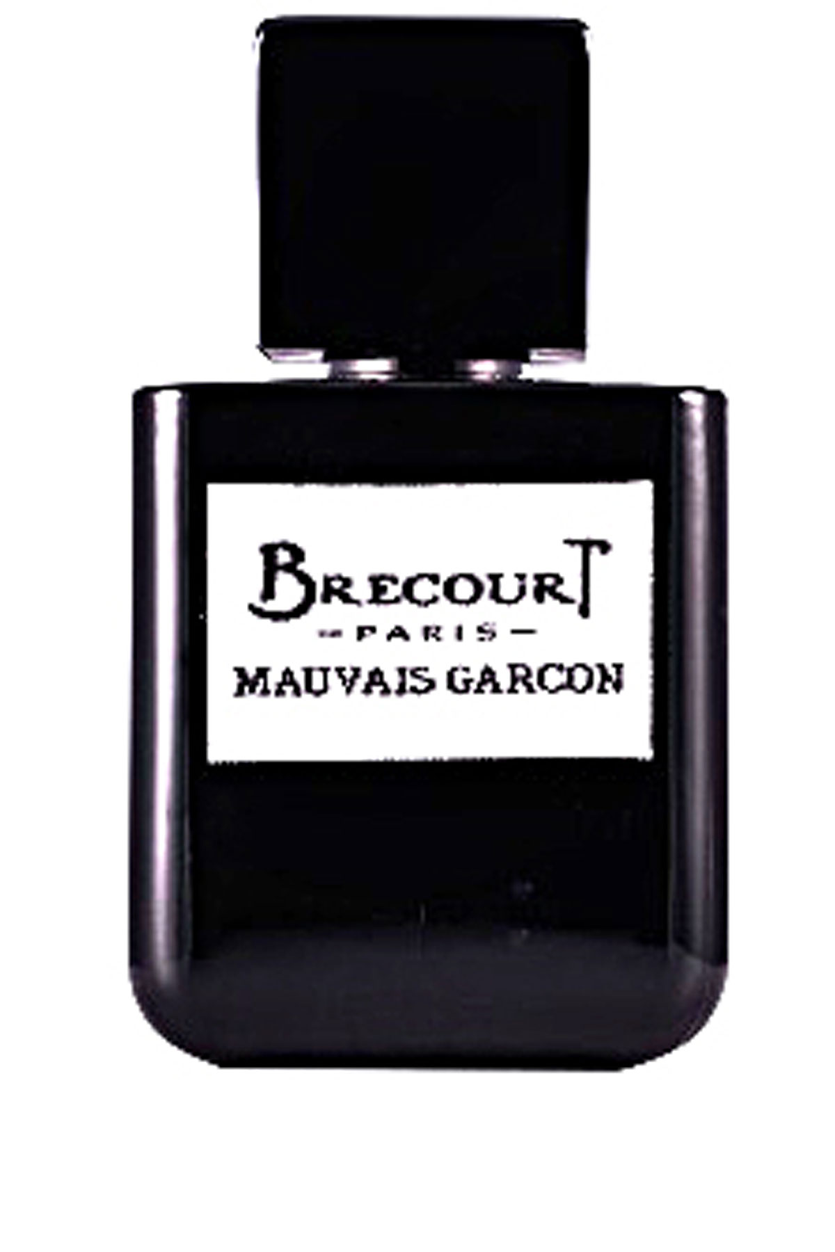 Brecourt Fragrances for Men, Mauvais Garcon Eau De Parfum 50 Ml, 2019, 50 ml