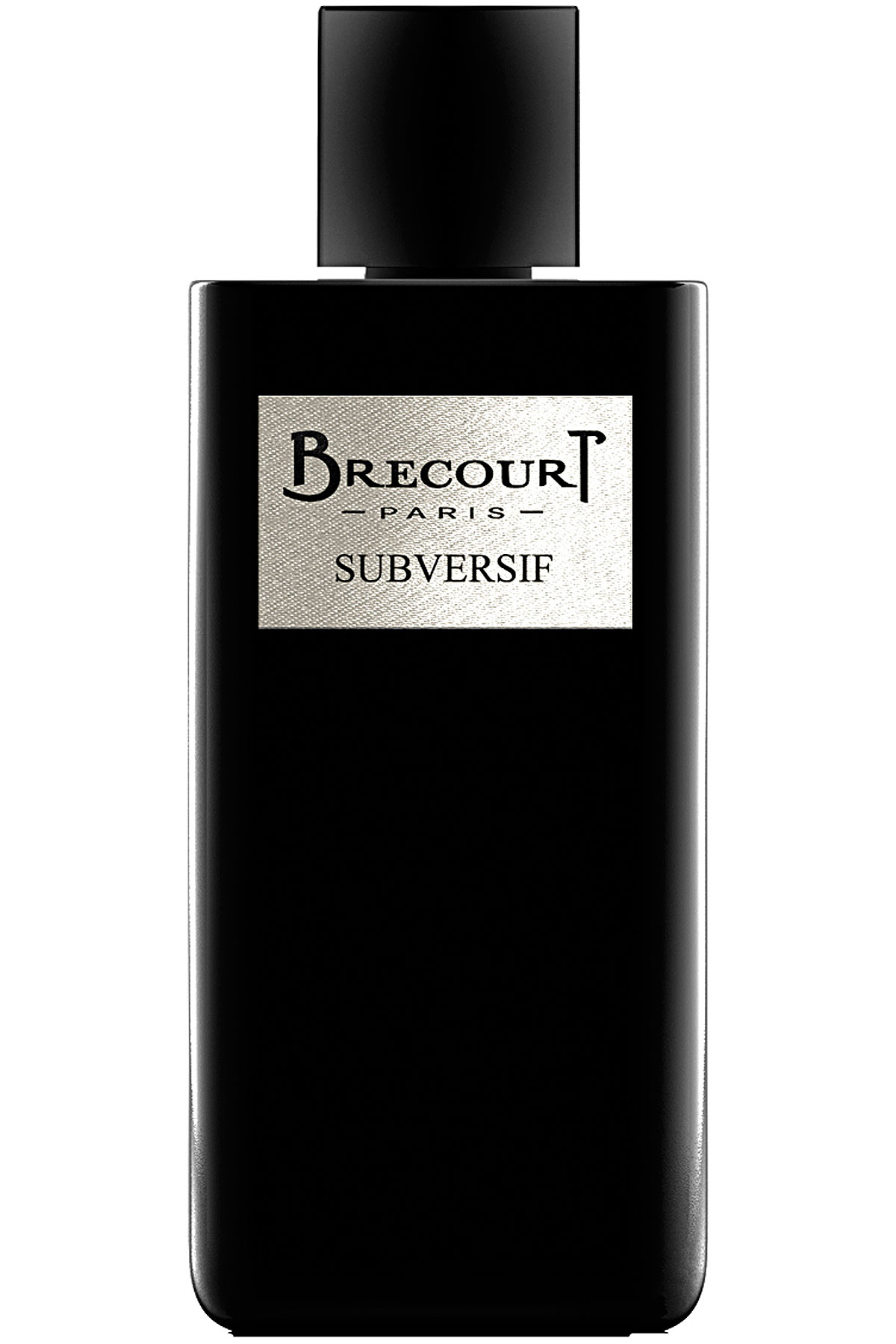 Brecourt Fragrances for Men, Subversif Eau De Parfum 100 Ml, 2019, 100 ml