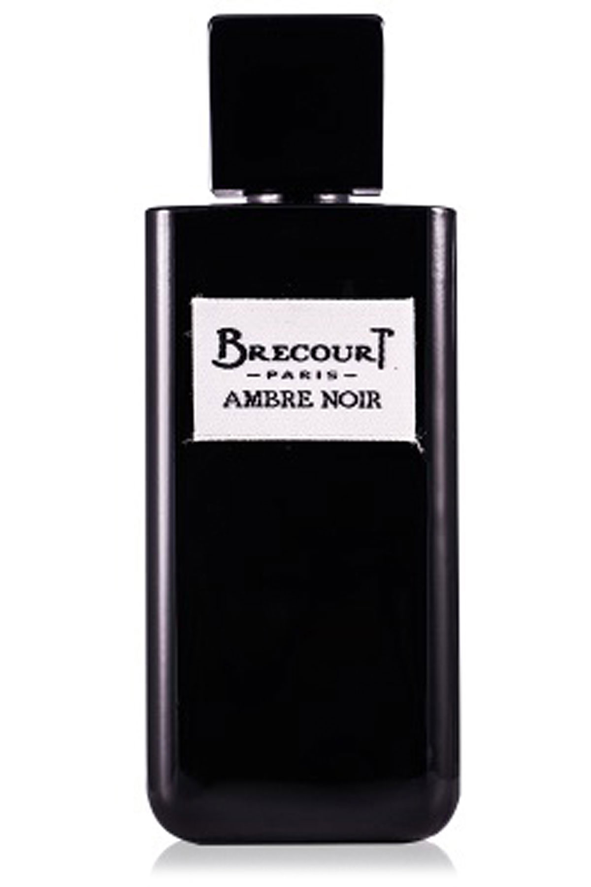 Brecourt Fragrances for Women, Ambre Noir - Eau De Parfum - 100 Ml, 2019, 100 ml