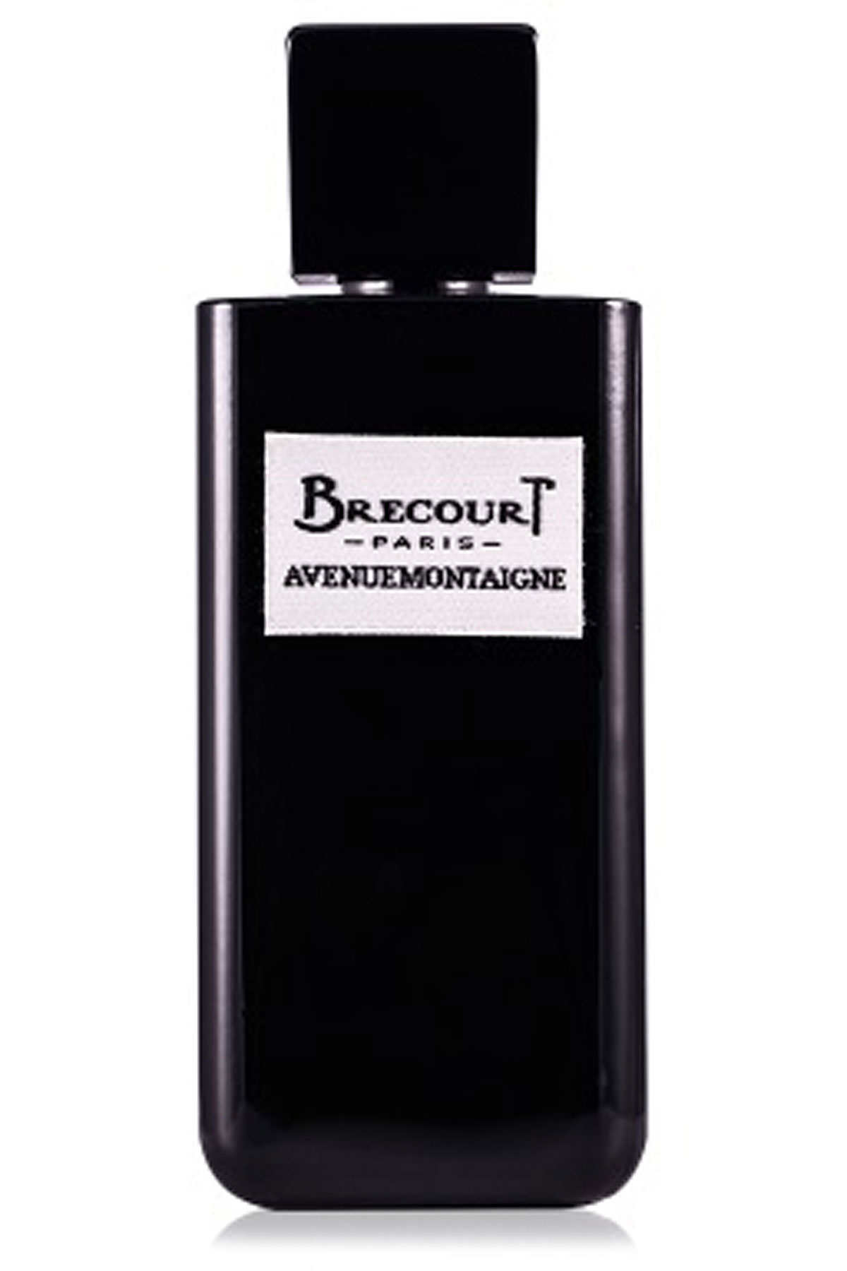 Brecourt Fragrances for Women, Avenue Montaigne - Eau De Parfum - 100 Ml, 2019, 100 ml