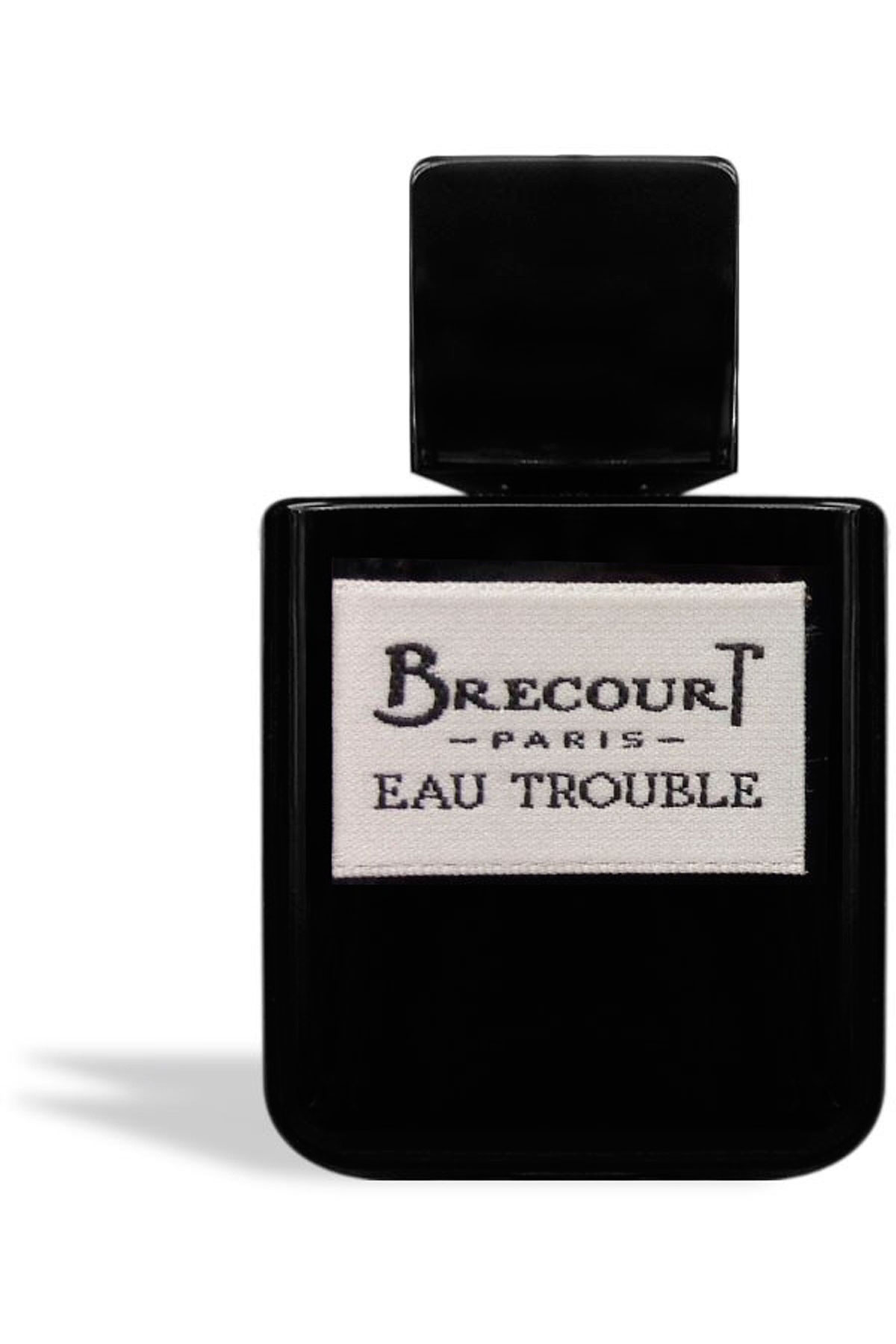 Brecourt Fragrances for Women, Eau Trouble - Eau De Parfum - 50 Ml, 2019, 50 ml