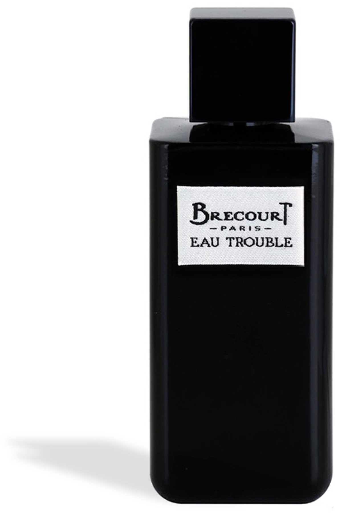 Brecourt Fragrances for Women, Eau Trouble - Eau De Parfum - 100 Ml, 2019, 100 ml
