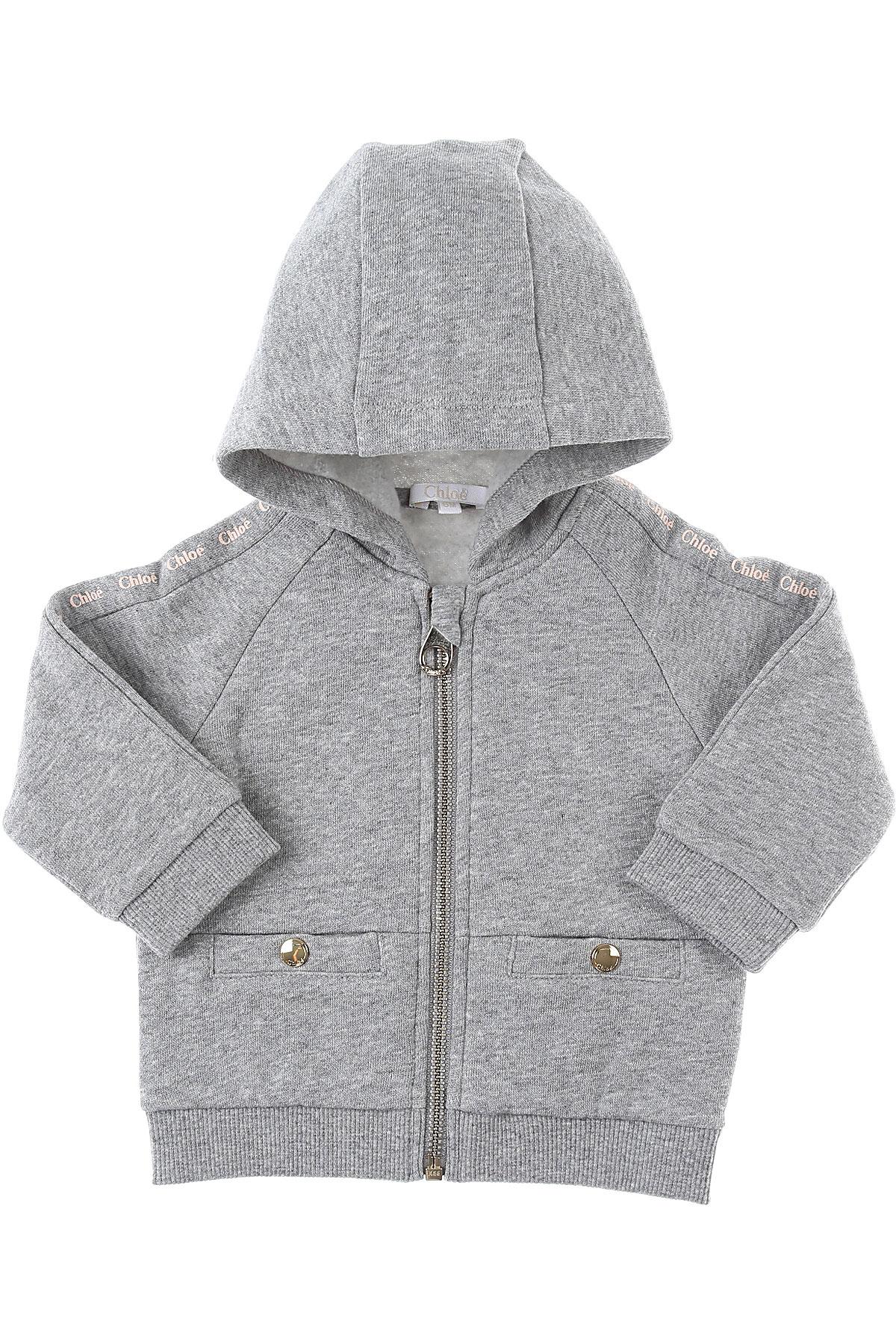 Chloe Baby Sweatshirts & Hoodies for Girls On Sale, Grey, Cotton, 2019, 12M 18M 2Y 3Y 6M 9M