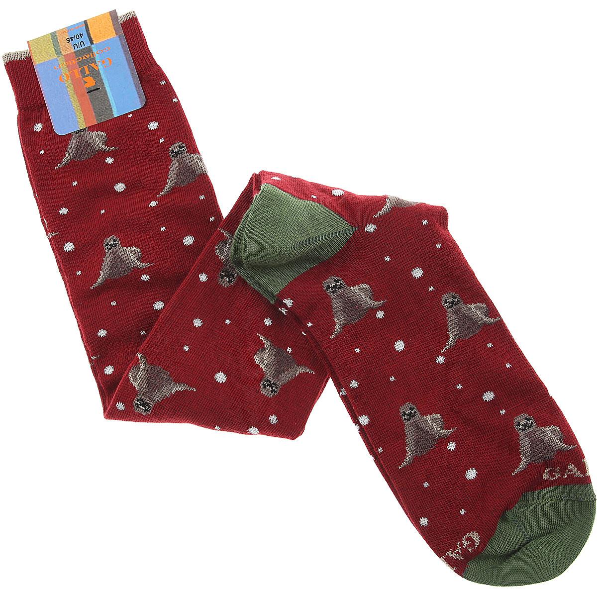 Gallo Socks Socks for Men, Amaranth, Cotton, 2019