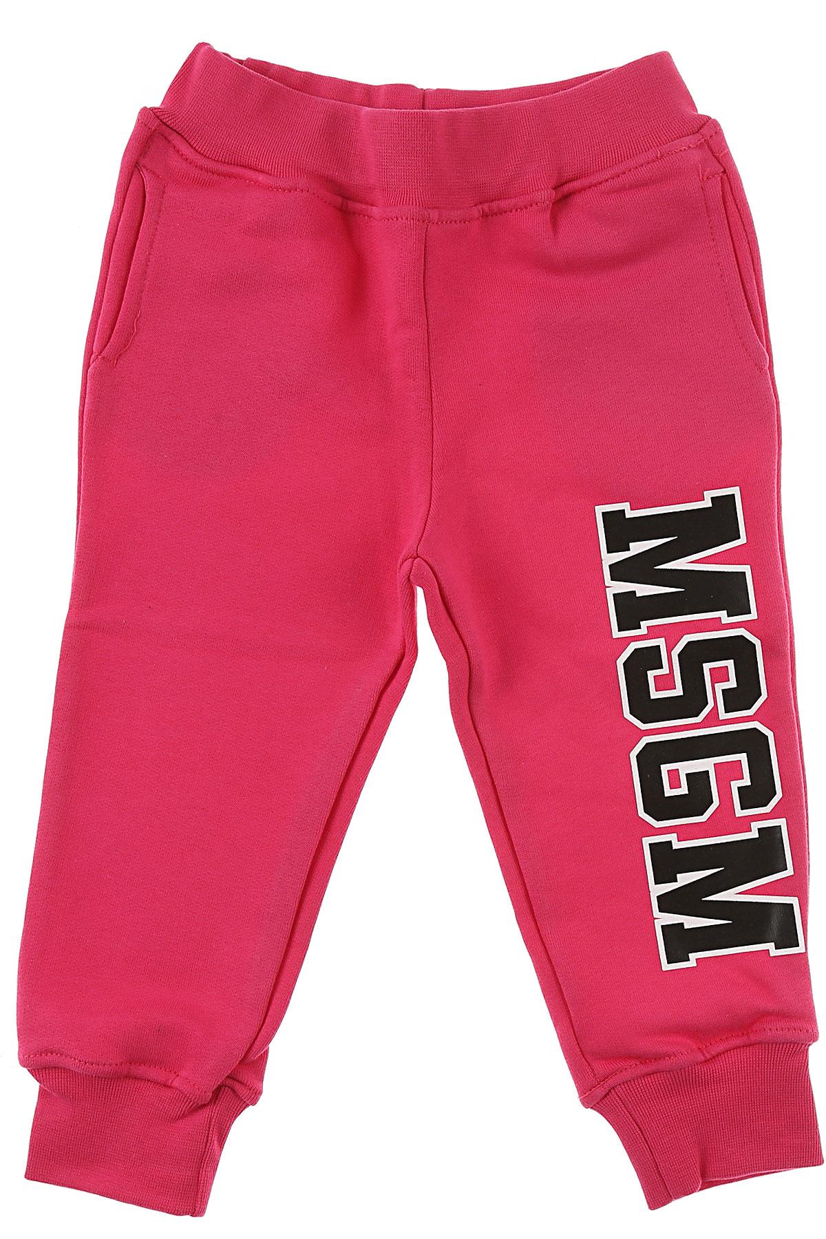 Image of MSGM Baby Sweatpants for Girls, Fuchsia, Cotton, 2017, 12M 18M 6M 9M
